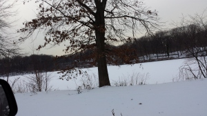 Weequahic Park Lake